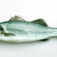 Блюда из рыбы эффективны в профилактике паркинсонизма