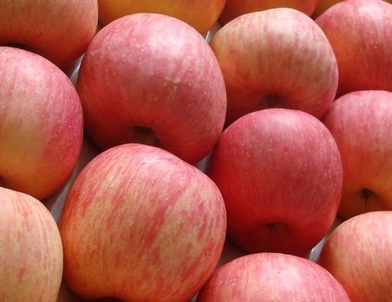 аллергия на яблоки перекрестная с чем