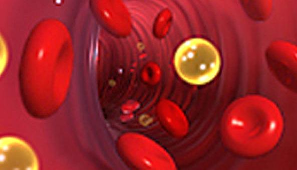 повышенный холестерин при беременности что делать