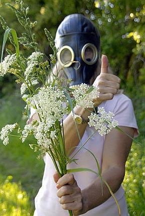 симптомы аллергии ротвейлера
