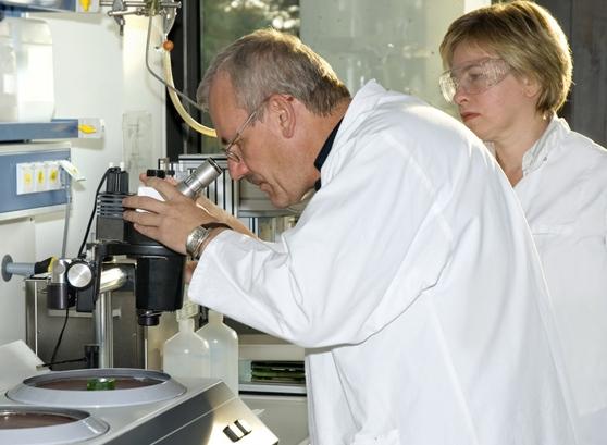 Работа вирусов–«киллеров», атакующих раковые клетки, стала более эффективной