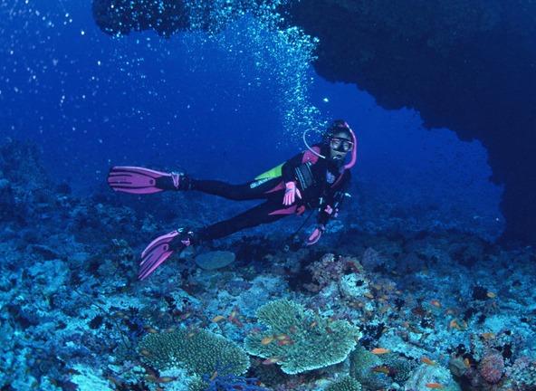Лекарство от сибирской язвы находится на дне океана