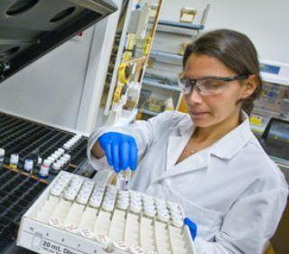 Выявить рак печени на ранних стадиях позволит метод окрашивания