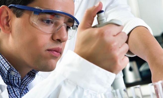 Медики научились извлекать нервные стволовые клетки из мозга с помощью магнита