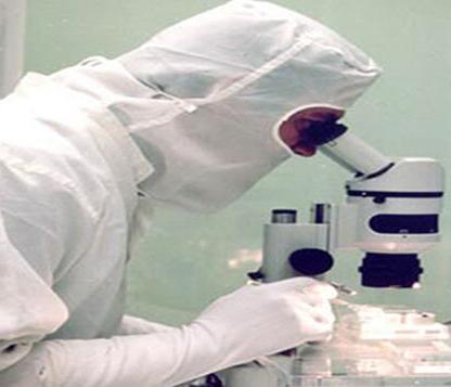 Российские и малазийские ученые совместно разрабатывают вакцину против лихорадки Денге