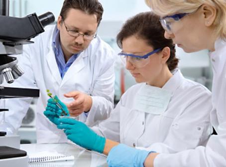 Лекарство от агрессивного рака есть в теле у самих пациентов