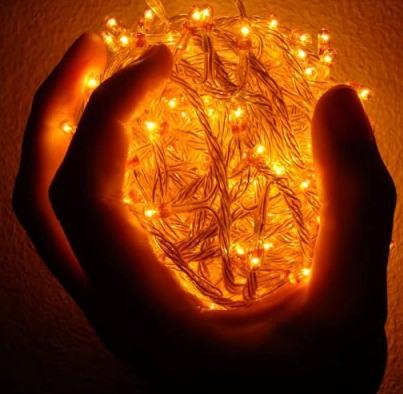 Срок хранения донорского сердца увеличится, благодаря новому изобретению