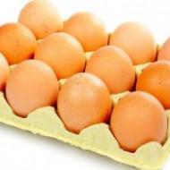 Употребление куриных яиц решает проблему выпадения волос