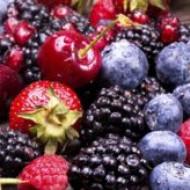 Дикорастущие ягоды обладают мощными противораковыми свойствами