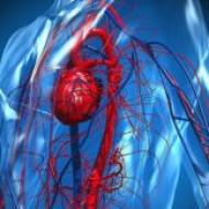 Ученые предлагают лечить атеросклероз инъекциями нановолокон