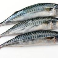 Рыбий жир станет источником нового антисептика