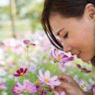 Усиленные меры гигиены – путь к аллергии и астме