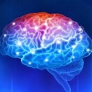 Возбудитель кандидоза провоцирует болезнь Альцгеймера