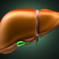 Новая оценка полигенного риска, помогающая предсказать вероятность поражения печени лекарственными препаратами