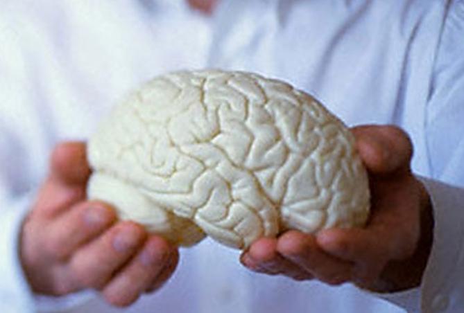 Теперь человеческий мозг будет «как на ладони»