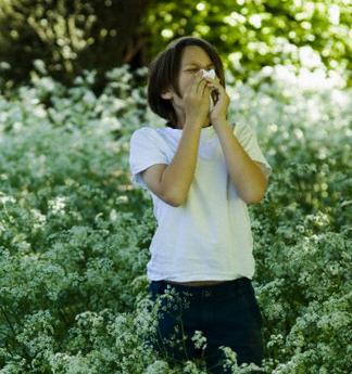 Новый спрей для носа избавит от симптомов сезонной аллергии