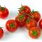 Безопасные ГМО-томаты станут источником ресвератрола
